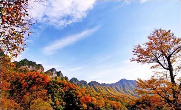 """四川攀枝花等3市被授予""""国家森林城市""""称号"""