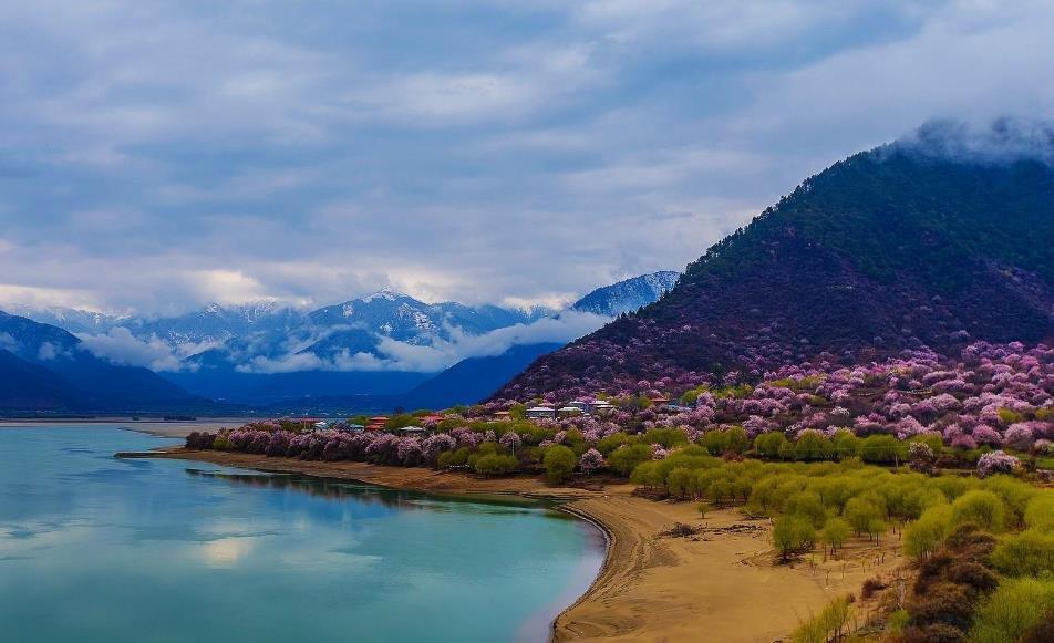 第十六届西藏林芝桃花节:3月29日正式开启
