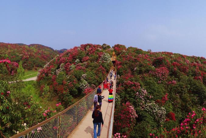 2017年江西将着力创建旅游体制改革示范省