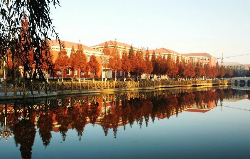 首届中国养生美食文化节将在青岛平度市隆重开幕!
