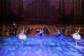 经典芭蕾舞剧《睡美人》惊艳亮相大剧院