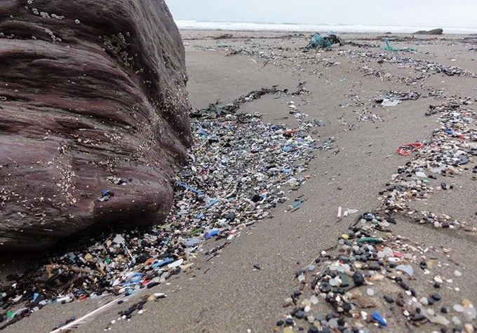 海洋垃圾分类,人类都向里面扔了些什么