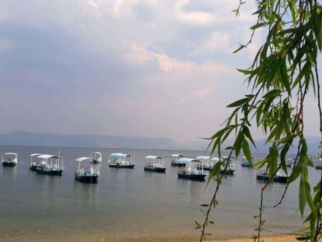 云南这条小众自驾线花海不输大理丽江,还有一个只能划船进出的地方