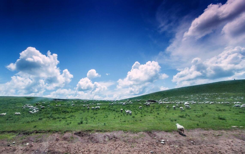 内蒙古打造完善自治区级旅游公路体系