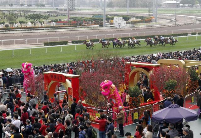 新春全家出游,在香港开启火旺狗年!