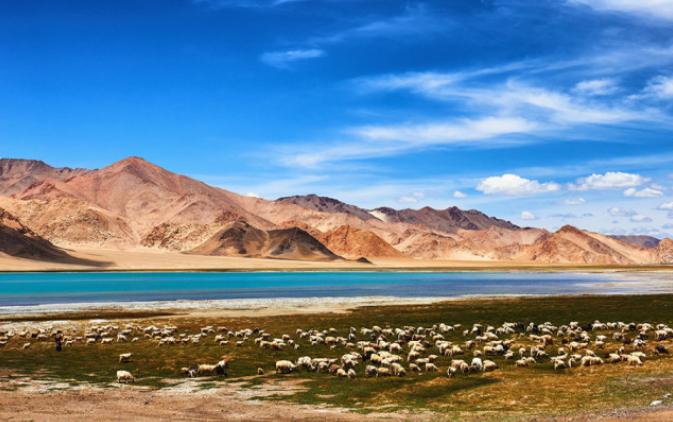 自驾新藏线,无人区现高原公路特有景观,越走越惊艳