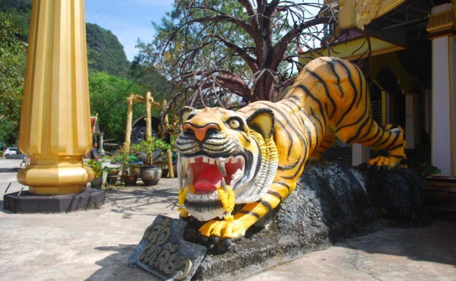 泰国景点野猴增多 虎窟寺贴中文禁止游客喂食