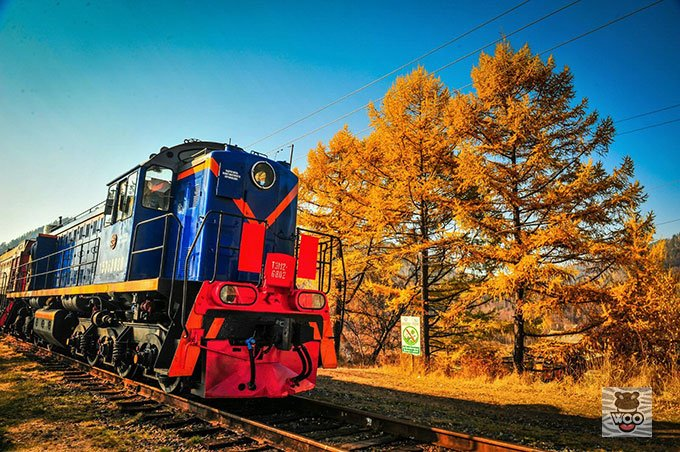 从沈阳到莫斯科 火车上的6天里你将看到这些风景