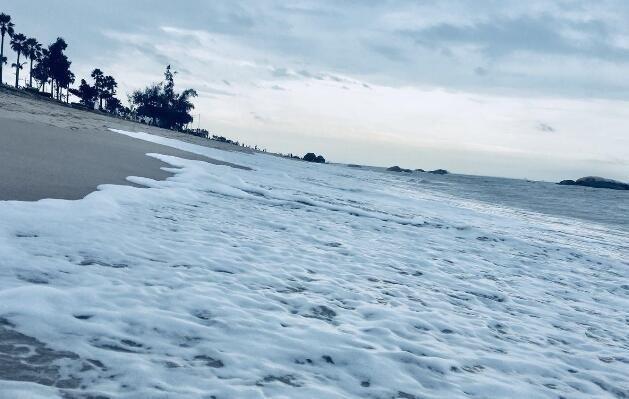 """厦门环岛路海岸刮""""雪浪"""" 白茫茫似下雪"""