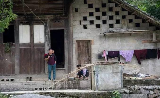 贵州深度贫困村居然藏着这样的深山野果 70岁老人爬树采摘