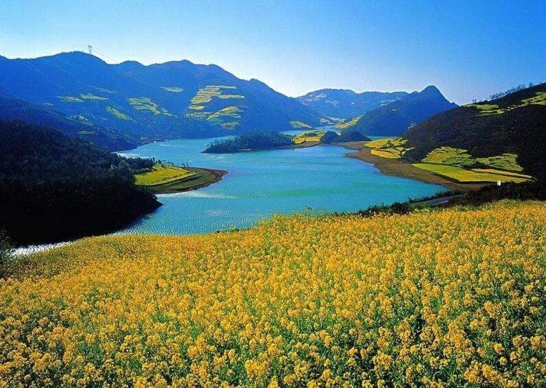 云南:全省旅游投诉同比下降超七成