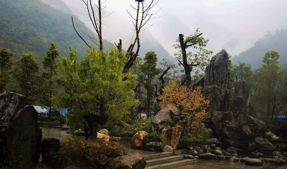 四川青川成功签约100亿元生态康养旅游项目