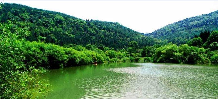 """景在村中 村融景中 桐庐分水大力发展""""森林旅游"""""""