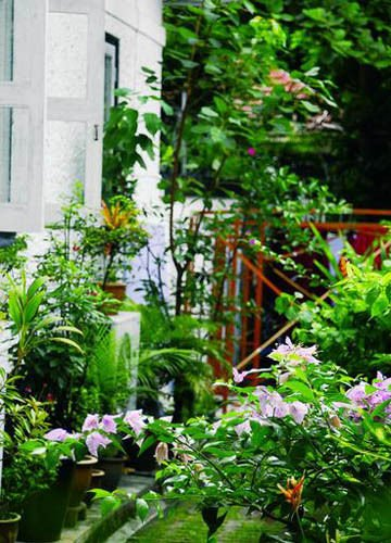私家花园生机勃勃六要素