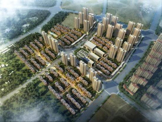 两路大咖倾情联袂,新力地产要在九龙湖搞大事!