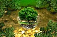 江西省获国家自然科学基金项目创新高