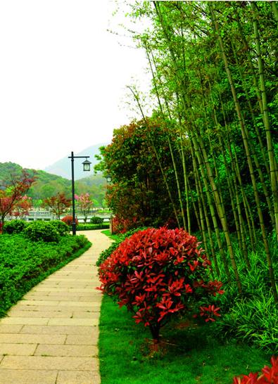 南通中心城区每年将建设6至8个小游园