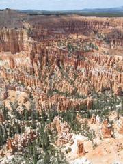 惊艳世人的美国国家公园
