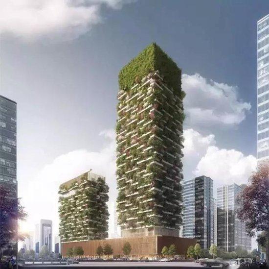 屋顶垂直绿化,南阳城市第五立面靓丽风景线