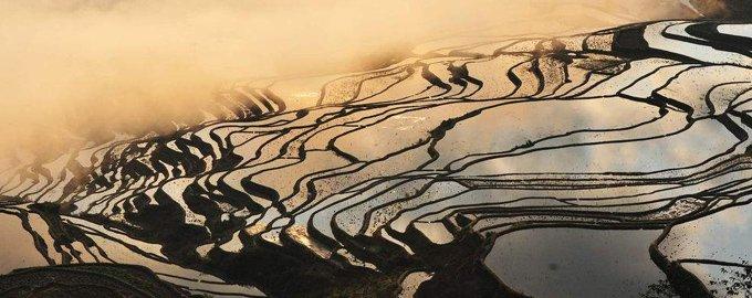 师法自然――自然的创意,梯田景观的魅力