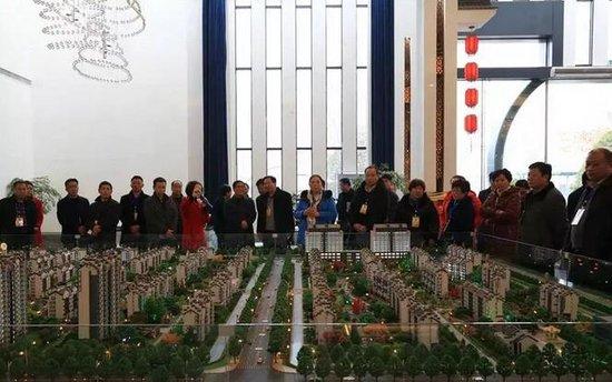 【视察】12月24宛城区人大代表团视察中信国安
