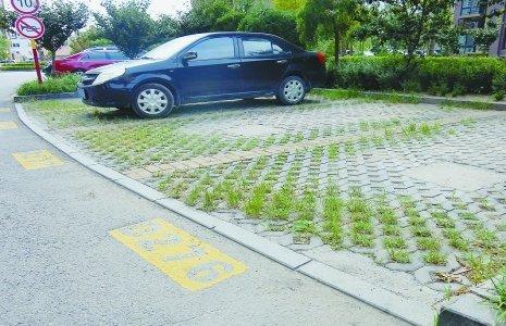 很容易就在小区内找到了停车位.图片