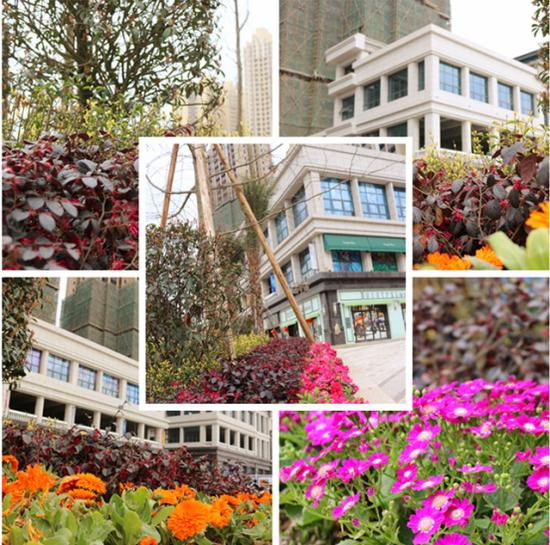3月传化·锦园最新施工进度 高清实景大图来袭
