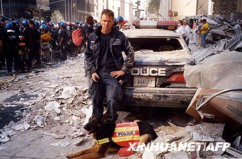 组图:美国9-11英雄搜救犬获克隆 5只同亮相