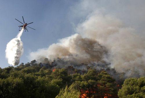 组图:希腊森林火灾蔓延 消防飞机扑救图片