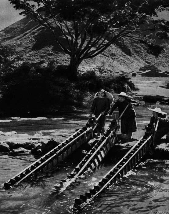 广西罗城县仫佬族妇女在田间车水灌地,1953年 朱康乐 摄