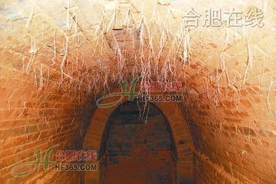 安徽 > 正文     图1 :      图2:     上图:古墓葬的内部结构
