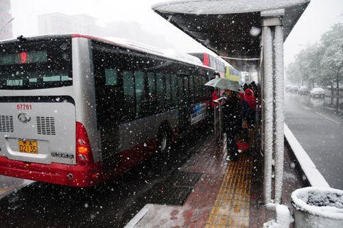 京城迎来今年第一场降雪 城区气温骤降(图)
