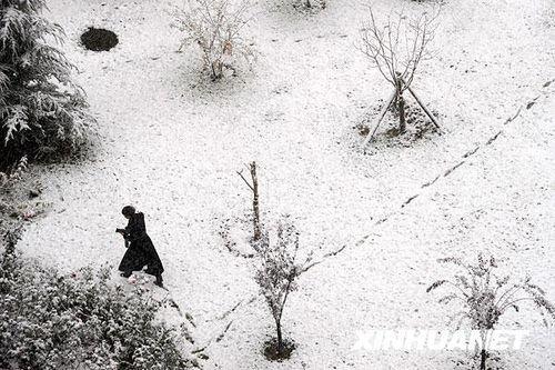 北国的雪 - Ava - Ava