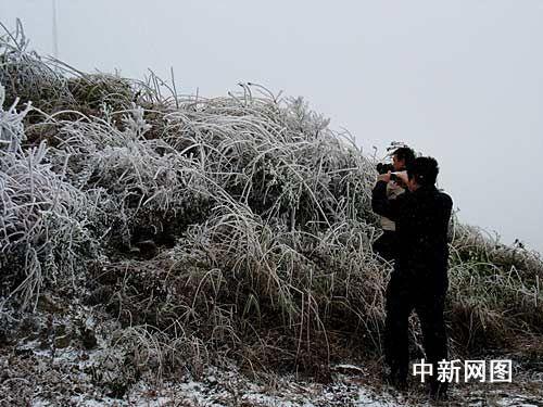 气温骤降 广东韶关飘雪结冰(组图)