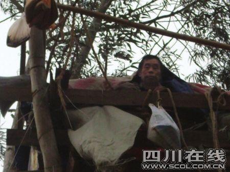六旬老汉因拆迁赔偿相差22万树上住3个月 - 真诚相待 - 爱的天堂博客