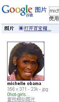奥巴马夫人照片被丑化成猩猩脸(图)