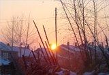 黑龙江:雪中夕阳