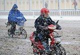 天津几名骑车人行进在雪中