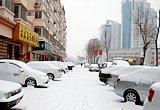 天津市迎来2010年第二场雪