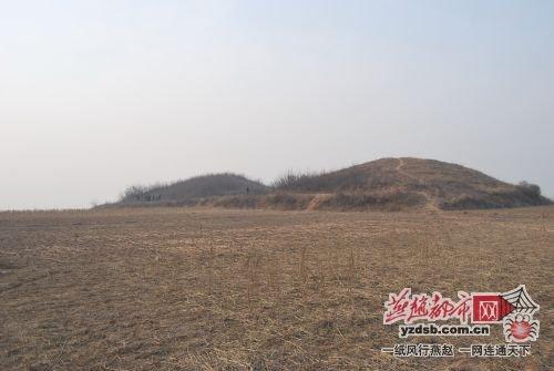 河北永年赵王陵4号墓遭盗掘 嫌疑人落网(图)