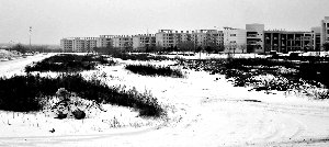 燕山大学西校区尚有很多未建设的土地。本报记者 钱昊平 摄