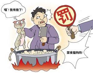 我国或规定食用猫肉狗肉罚款五千拘留15天 - 顿国居士 - .