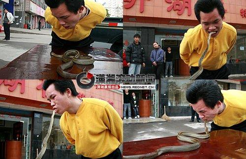 湖南岳阳一小伙街头表演生吃活蛇(组图)