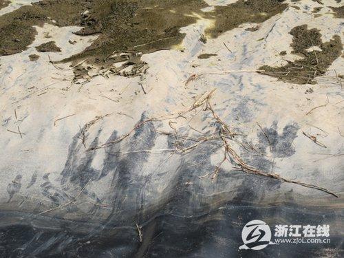 5姐弟落水前曾挣扎 警方发现9处痕迹