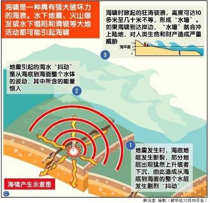智利地震海啸对我国大陆沿海无影响