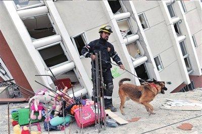 智利总统称愿接受外国援助