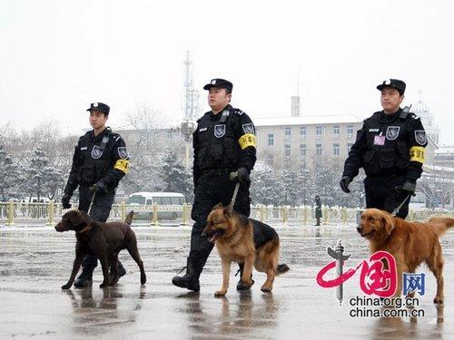 图文:首都特警雪中巡视