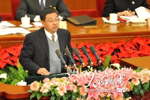 图文:王新陆委员发言