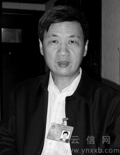 陈仲代表:反垄断议案提交后 50个电话来说情