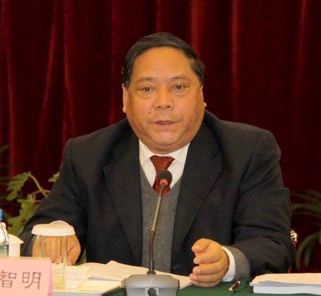 貴州副省長祿智明:希望提高家電下鄉補貼